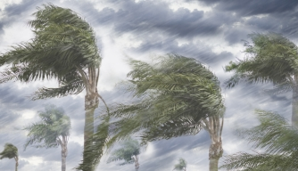 Rain and storm winds blowing trees. (Credit: Blend Images/Getty Images)