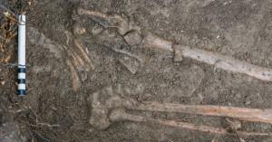 Leg bones in grave. (Credit: Thorsten Kahlert)