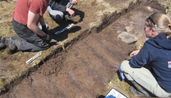 Satellite Technology Suggests New Viking Site in Canada