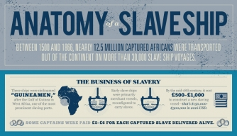 Anatomy of a Slave Ship