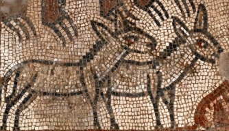 A pair of donkeys in the Noah's Ark mosaic. (Credit: Jim Haberman/Baylor University)
