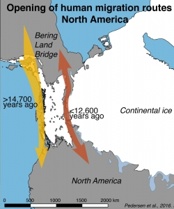 Map outlining the opening of the human migration routes in North America. (Credit: Mikkel Winther Pedersen)