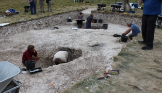 """Superhenge"" Excavation Reveals Big Surprise"