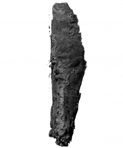 The scroll from En-Gedi rendered from the micro-CT scan. (Credit: B. Seales)