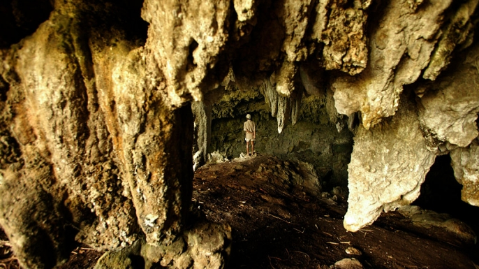 A local villager inspects one of the caves where bones of the species Homo floresiensis were found in 2004.