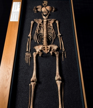 Another skeleton recovered from the cemetery in Southwark.