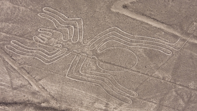 Spider figure at the Nazca lines.