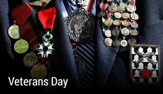 HISTORY Vault: Veterans Day