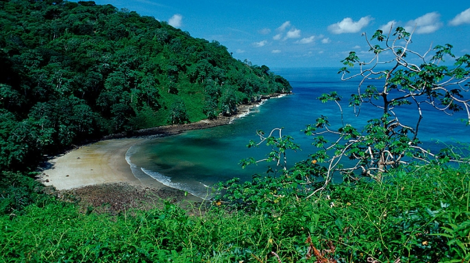 Cocos island, Costa Rica. (Credit: Reinhard Dirscherl/ullstein bild via Getty Images)
