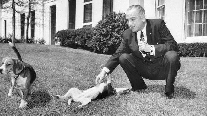 President Johnson scratches the belly of one of his two beagles (named Him and Her) on the White House lawn on April 12, 1964. (Credit: Bettmann/Getty Images)