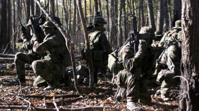 Squad of SEALs performing woodland operation. (Credit: U.S. Department of Defense)