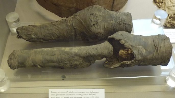 The mummified remains as shown in the 2014 exhibition in Museo Egizio Turin Suppl. (Credit: Museo Egizio Turin Suppl)