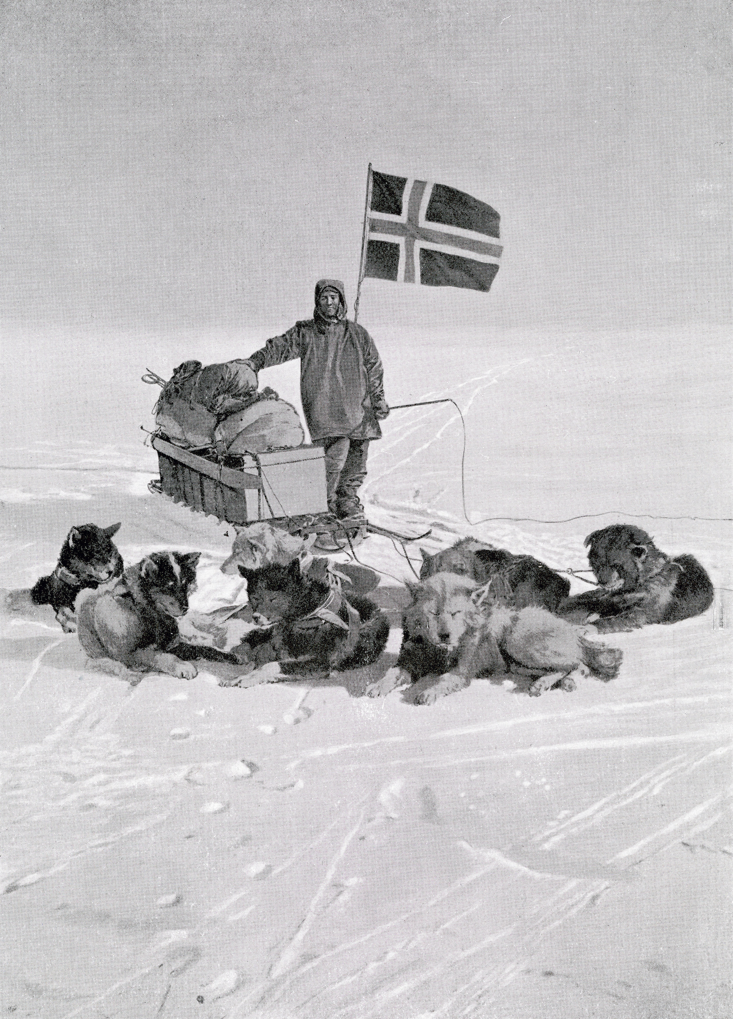 the treacherous race to the south pole history in the headlines
