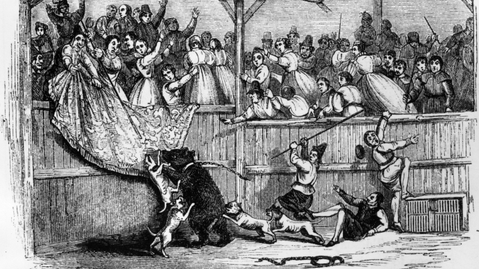 Bear-baiting in the 16th century. (Credit: Hulton Archive/Getty Images)