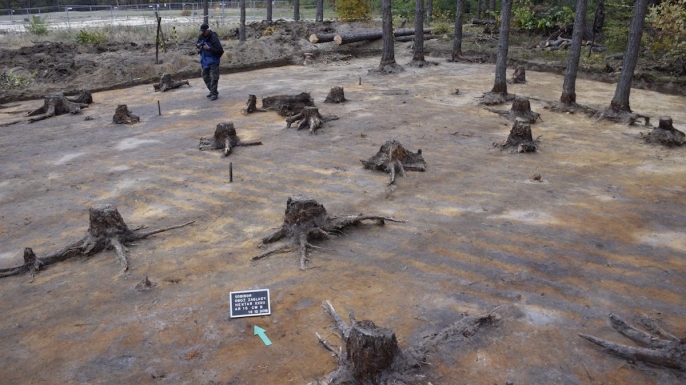 The excavation site at the former extermination camp of Sobibor.