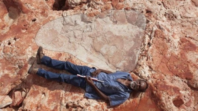 Richard Hunter and a sauropod track in the Walmadany area in the Dampier Peninsula, Western Australia. (Credit: Damian Kelly)