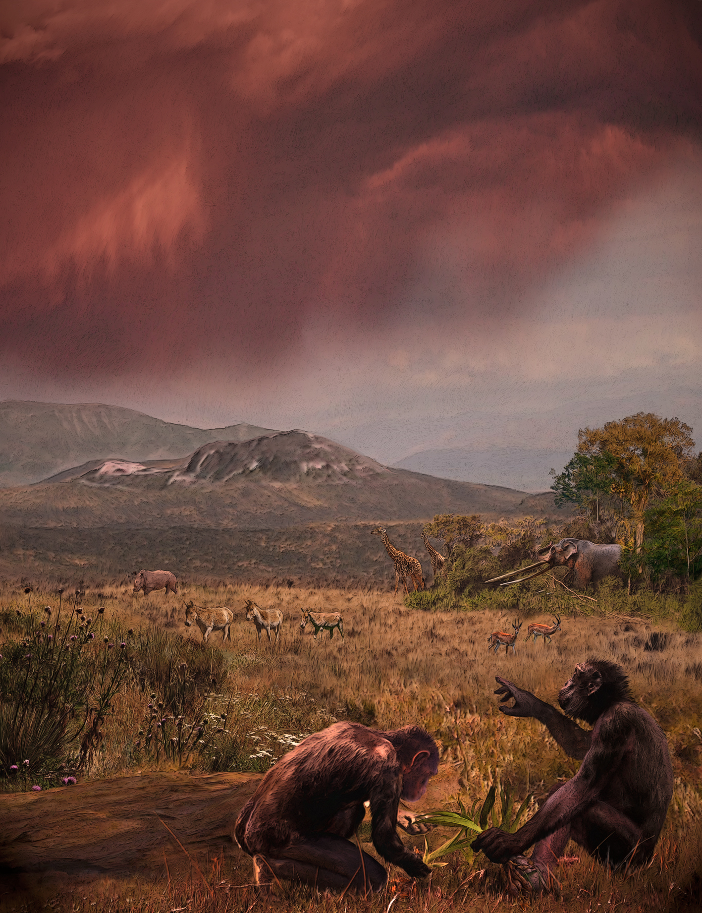 Humans originated in Europe, not Africa, claims new study