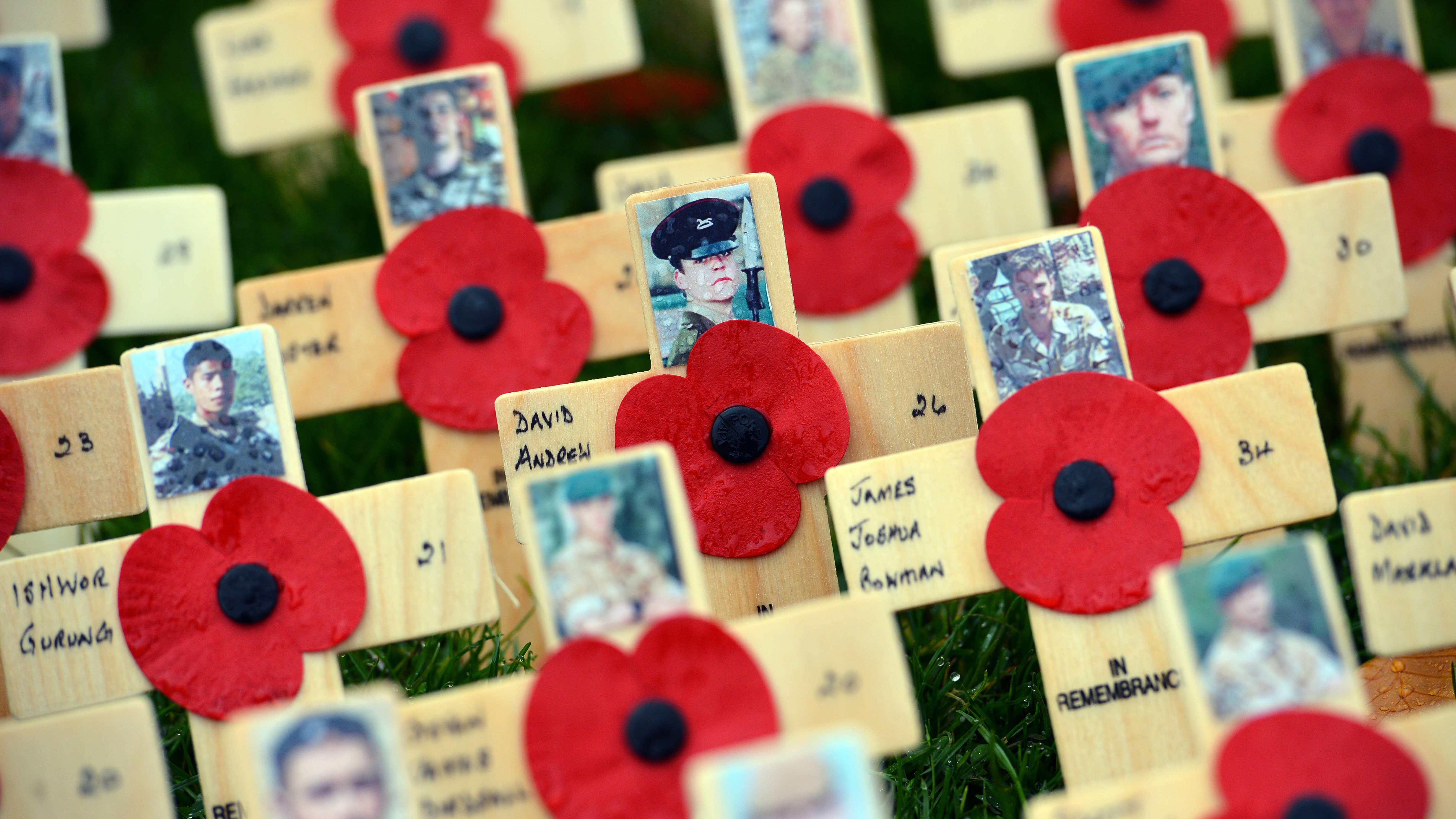 The poppy and the poet how a remembrance symbol was born wooden crosses bearing pictures of fallen servicemen and women and poppy flowers are planted in a publicscrutiny Image collections