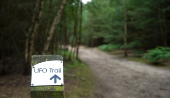 The UFO path within Rendlesham Forest, Suffolk, England, UK. (Credit: Sean Clarkson/Alamy Stock Photo)