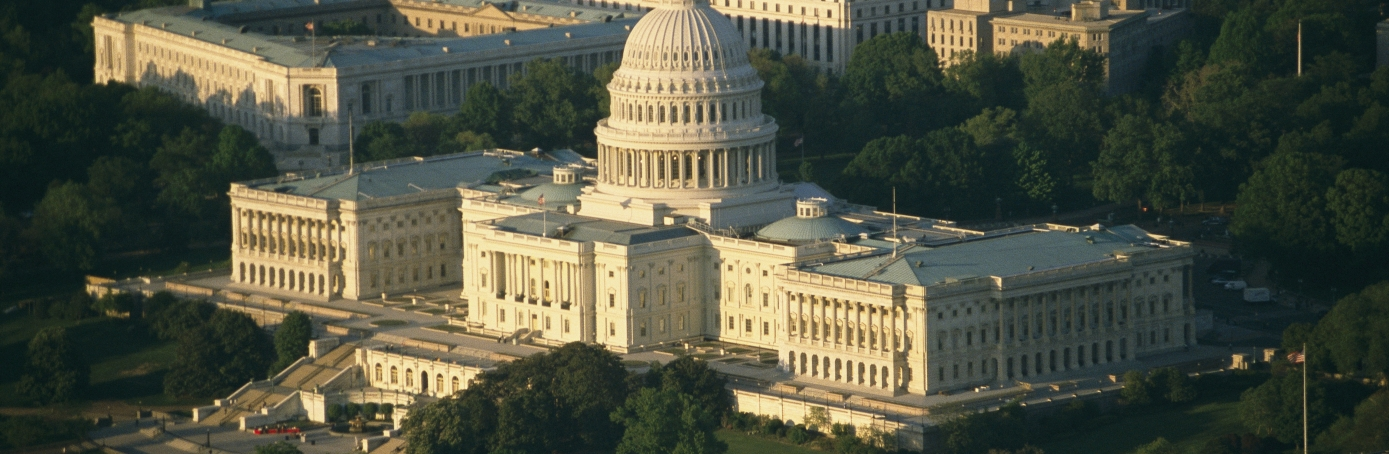 An aerial view of the United States Capitol Building. (Credit: Richard Nowitz/Getty Images)