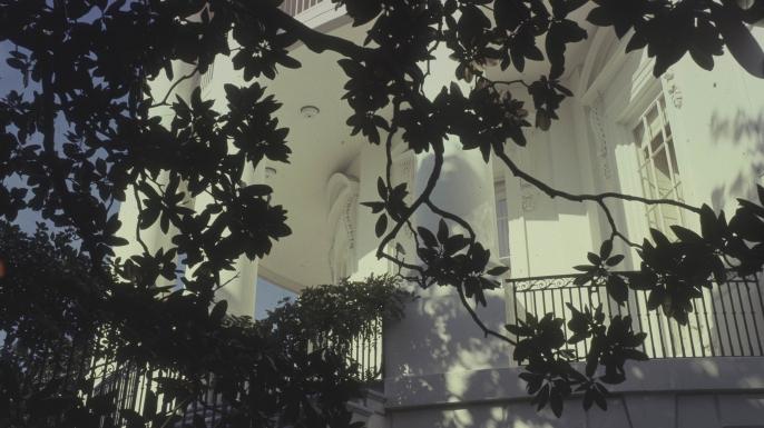 Jackson's Magnolia Grandiflora framing The White House for Vogue, 1967. (Credit:Horst P. Horst/Condé Nast via Getty Images)