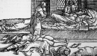 Rats Didn't Spread the Black Death—It Was Humans