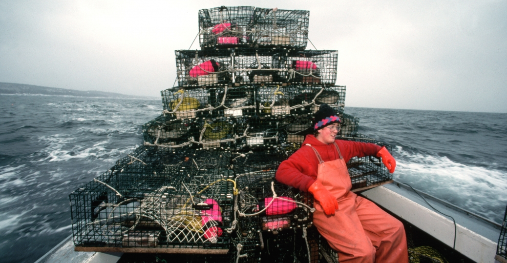 maine, lobster, lobster industry
