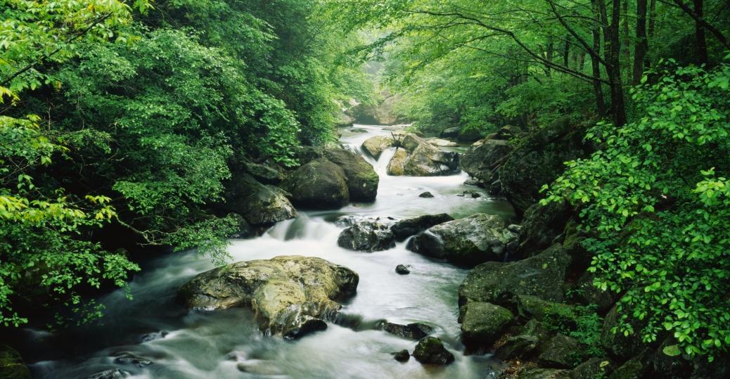 tallulah river, georgia, clay county, north carolina, standing indian mountain, southern nantahala wilderness, towns county