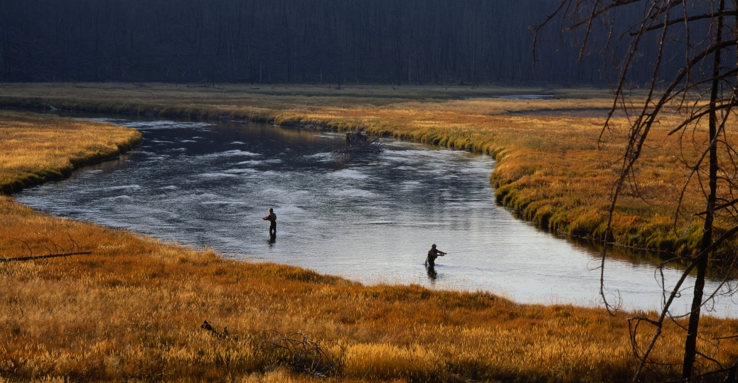 madison river, missouri river, wyoming, montana, jefferson river, gallatin river, fly fishing