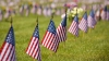 veterans, grave sites, memorial day, america, american flags