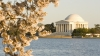 jefferson memorial, potomac river, west potomac park, 1934, the jefferson memorial, thomas jefferson, president jefferson, april 13, 1943