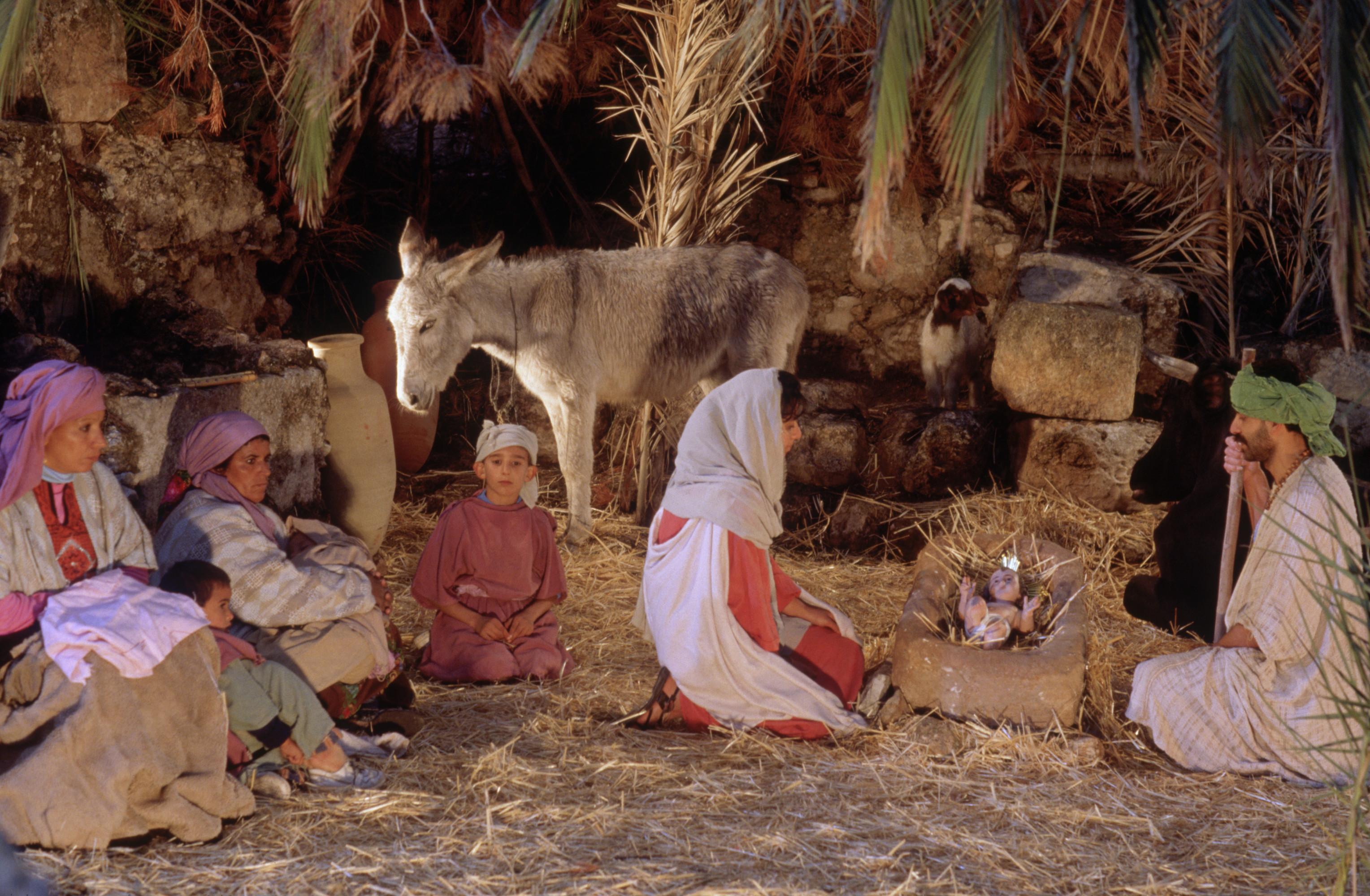 live-christmas-creche-in-bethlehem - Christmas Pictures - History of ...