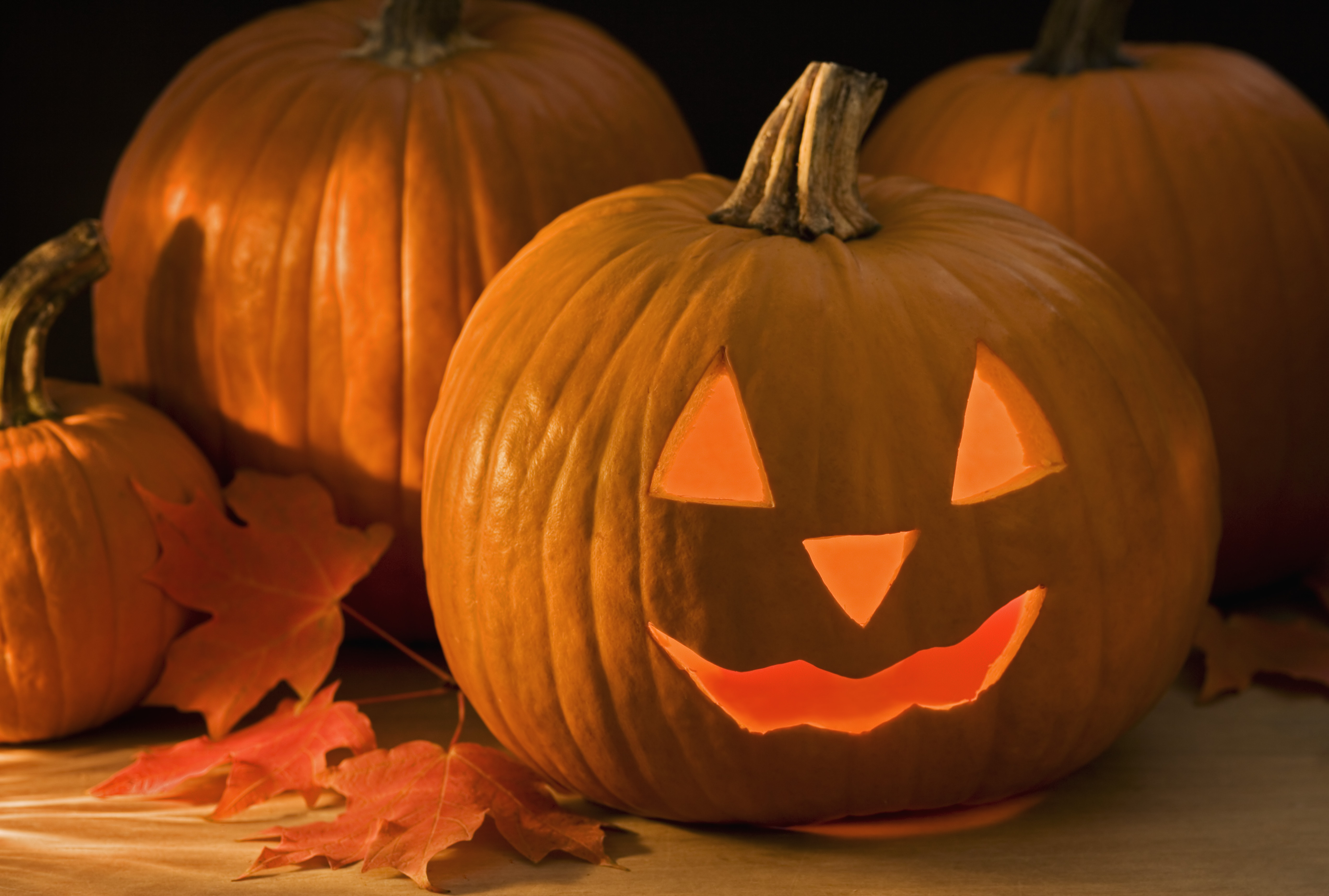 still-life-of-a-jack-o-lantern-2 - halloween pictures - halloween