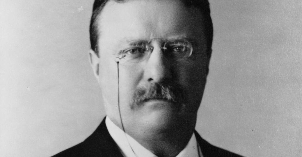 president mckinley, mckinley's assassination, president roosevelt, teddy roosevelt