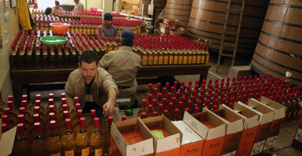 tequila tapatias, el tesoro, tequila, tequila production, jalisco, mexico