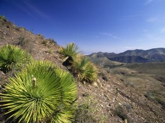 el quemado, sacred mountain, san luis potosi, mexico