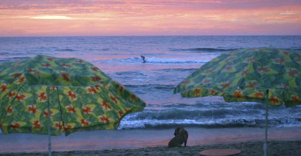 surfer, beach, sayulita, west coast of mexico, nayarit, mexico