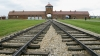 auschwitz, auschwitz-birkenau, death camp, gas chambers, nazi, the holocaust, concentration camps