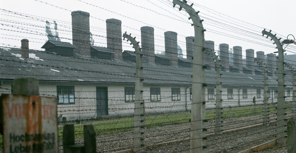 auschwitz, auschwitz-birkenau, death camp, gas chambers, nazi, the holocaust, concentration camps, extermination camp