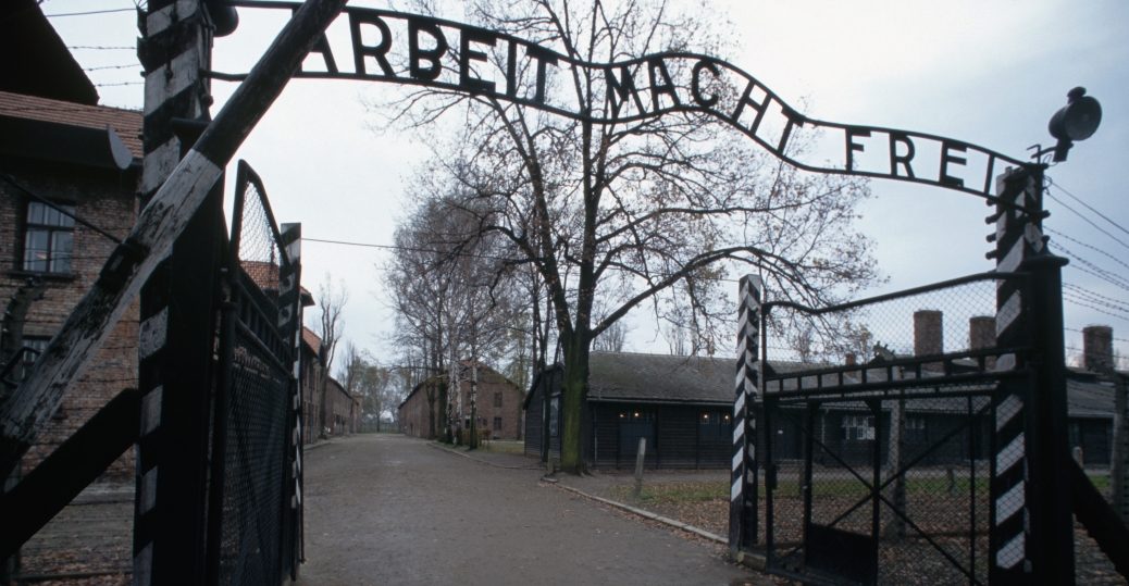 Image result for the holocaust, auschwitz