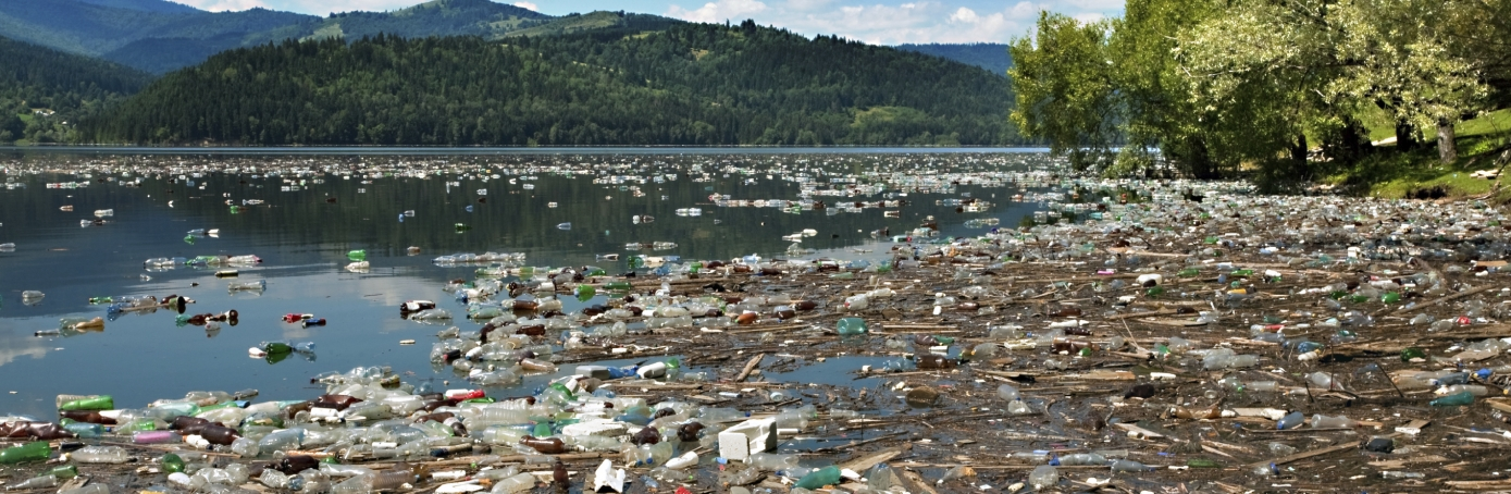 a history of the ocean pollution and the effects of it Water pollution: plastic in the ocean essay  history of ocean pollution iii  water pollution and its effects on the environment water is probably the most.