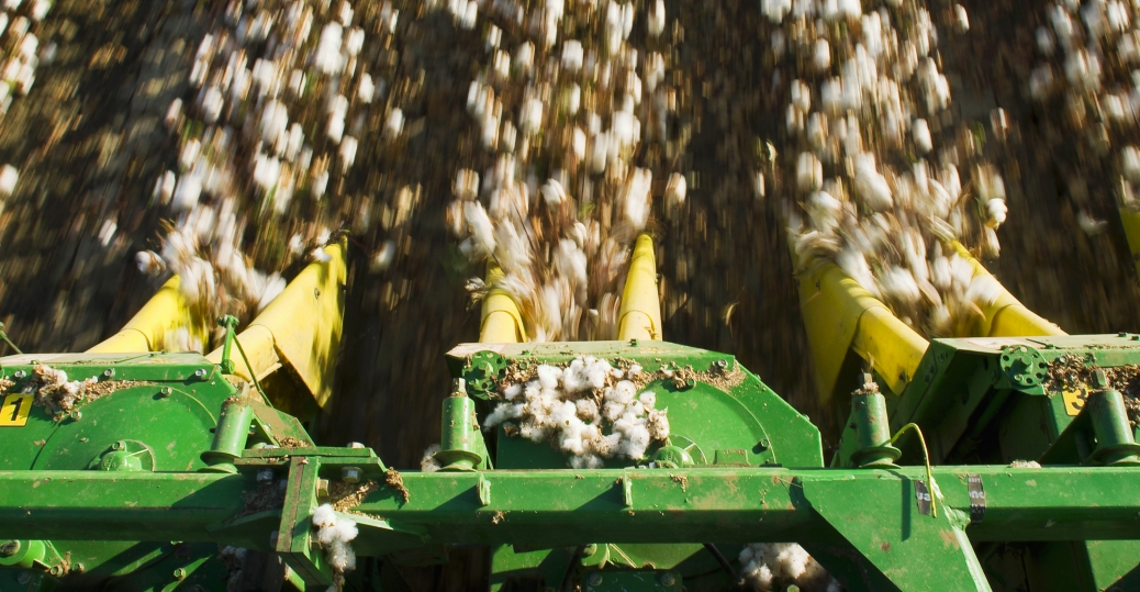 cotton, harvesting cotton, industrial inventions