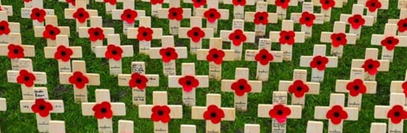 an introduction to the history of world war one Setting the tone: introducing students to world war  what's a good opening lesson for teaching world war  ask students what their family history is with the war.