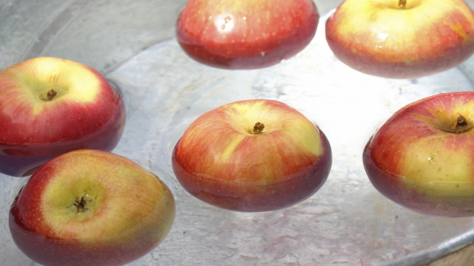Halloween, Food, Fruit