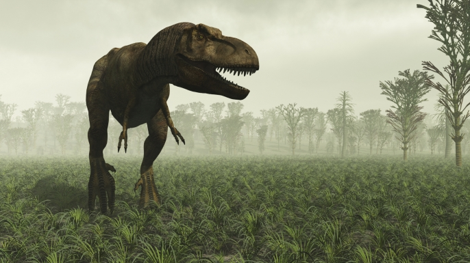 essay on what killed the dinosaurs The extinction of the dinosaurs started in the cretaceous period, around 65  million years ago,  was it an asteroid that killed the dinosaurs.