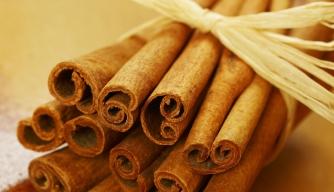 Cinnamon's Spicy History