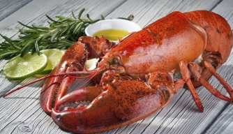 From Humble to Haute: Lobster's Climb to the Top