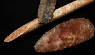 Ancient Infant's DNA Provides Key to Native American Ancestry