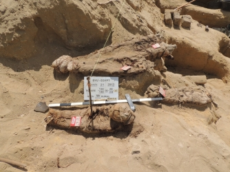 Bodies at the Fag el-Gamous dig site (Credit: BYU)