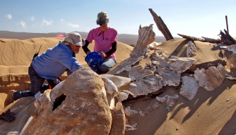 Archaeologists Unearth Giant Sphinx—in California